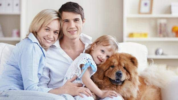 Wills & Trusts dog-young-family Direct Wills Leyton Marshes